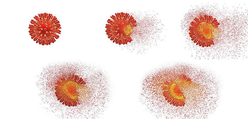 Sanificazione coronavirus